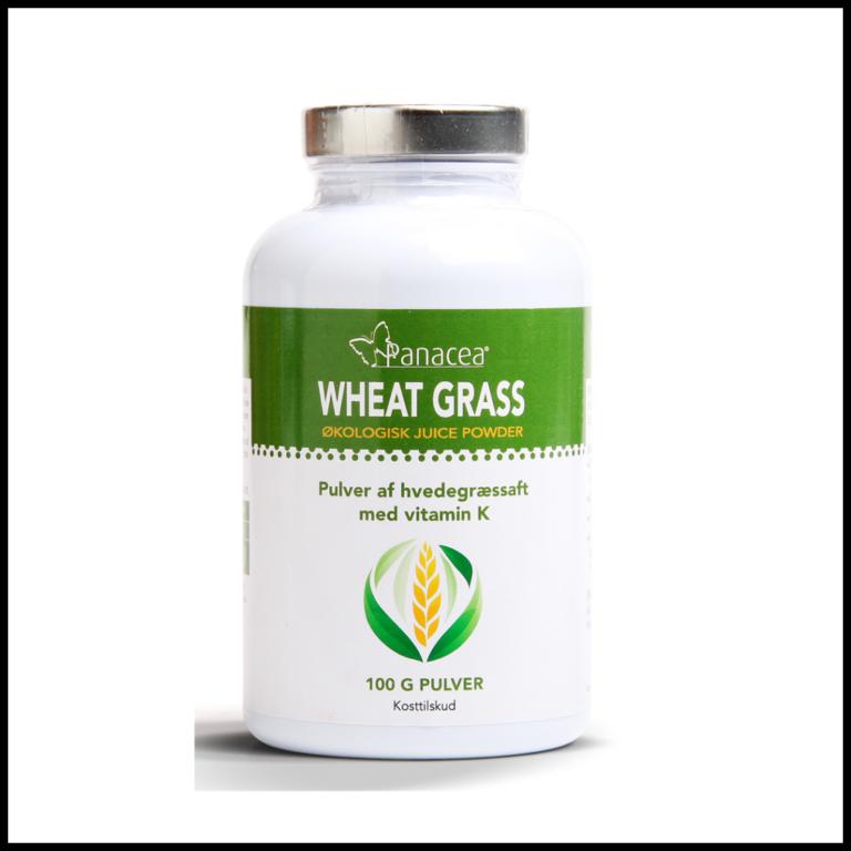 Wheat grass pulver